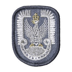 Polish Army Air Force Insignia Patch (Hussar)